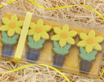 Chocolate Daffodils Gift Set for Mothers Day or Easter