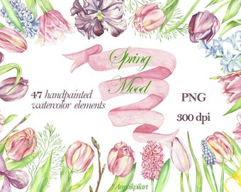 Watercolor clipart spring mood, 47 separate floral elements (pink, violet tulips, blueballs flower, hyacinth, muscari ,leaves and more).