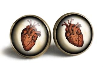 Anatomical Human Heart Vintage Inspired Drop  Dangle Earrings