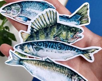 4 Fish Sticker Pack, vinyl watercolor art