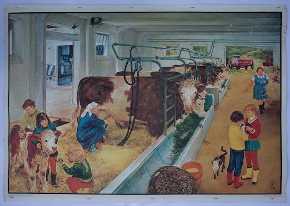 Wall Chart, at the farm, Offset-print,published by Quirin Haslinger, Linz, Austria, 1964