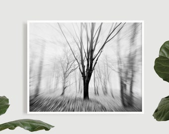 Minimalist fine art forest print, Nature photography wall art, Black and White woodland poster, Misty mountain home decor