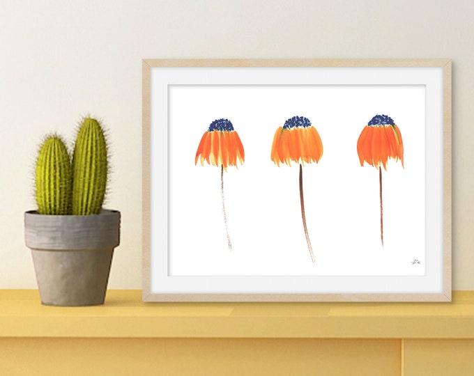Orange Coneflowers - Simple Hand Painted Floral Watercolor Print - Original Art Print - Minimalist Wall Decor