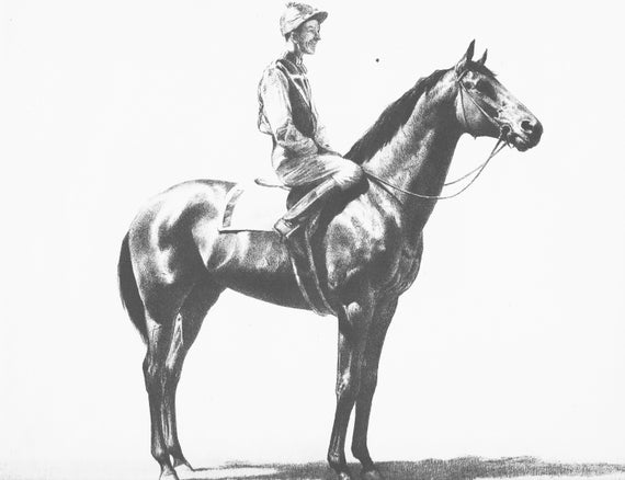 Vintage Horse Art Horse Illustration Of Seabiscuit By Cw