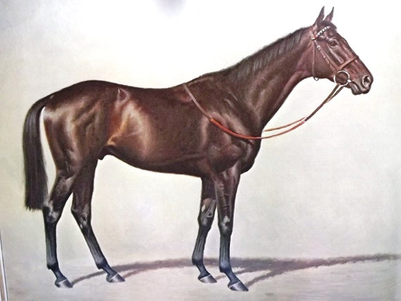 Equestrian Art Vintage Horse Print Vintage Horse Art Ile Etsy