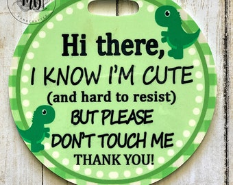 Don't Touch | Stroller Car Seat Tag | Germ Free | Plastic Tags | Newborn NICU Baby Stroller Tag | Plastic Dinosaur Green