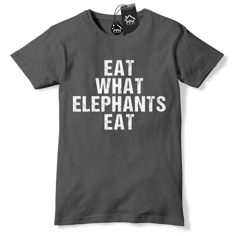Lesbians Eat What ? Ladies Comfy Hipster T-Shirt Comedy Trending T-Shirt