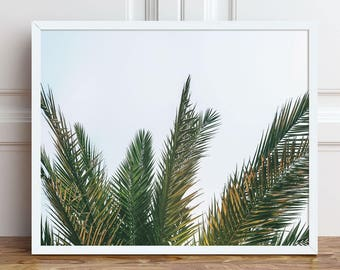 Palm Tree Photography, Palm Tree Decor, Large PRINTABLE Wall Art, Tropical Botanical Prints, California Beach Instant Download Art Print