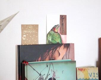 Carte postale illustration grenouille