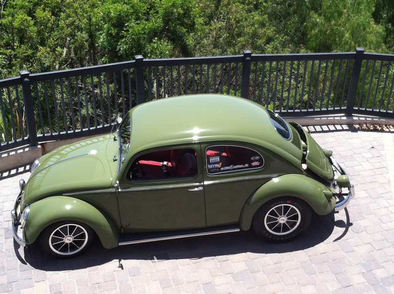 Green Volkswagen Beetle Photograph Vw Bug Classic Cars Etsy