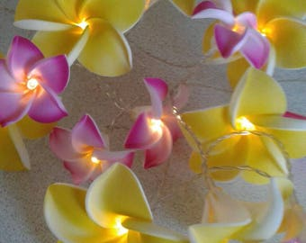 Led String #Fairy Lights - 8cm yellow and 4.5cm #Pink #Franjipani #Flowers