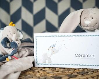 Noukie Bao & Wapi collection's birth announcement