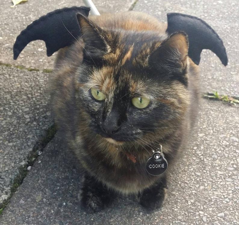 Bat Wings Cat Costume image 0