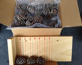 "Miniature Georiga Pine Cones (2"" +- 1/4"")   (59 QTY)  FREE SHIPPING"