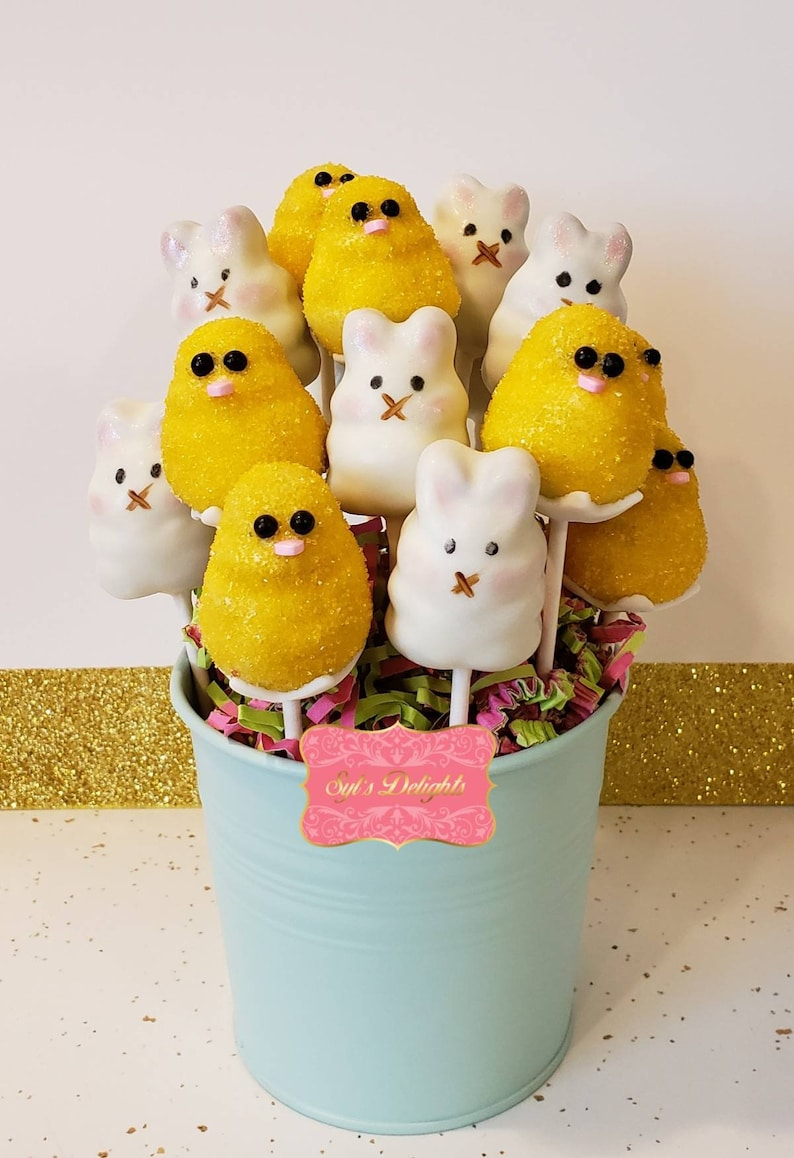 Easter bunny and Easter chick cake pops image 0