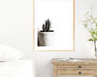 Cactus Print - Black and White Minimalist Art - Cactus Art - Cactus Wall Art - Fine Art Photography - Modern Cactus Print