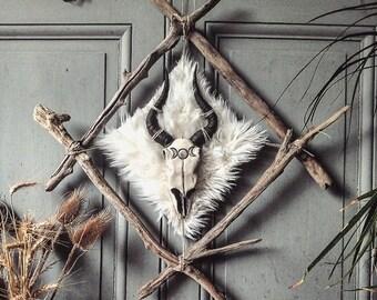 <<< Crâne de gazelle fait main >>>