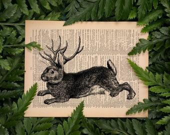 Jackalope, Cottagecore Decor, Mythical Creature, Cottage Core Gift, Rabbit Print, Hare Art, Cryptid Witchy Poster Cottagecore Room Decor 092