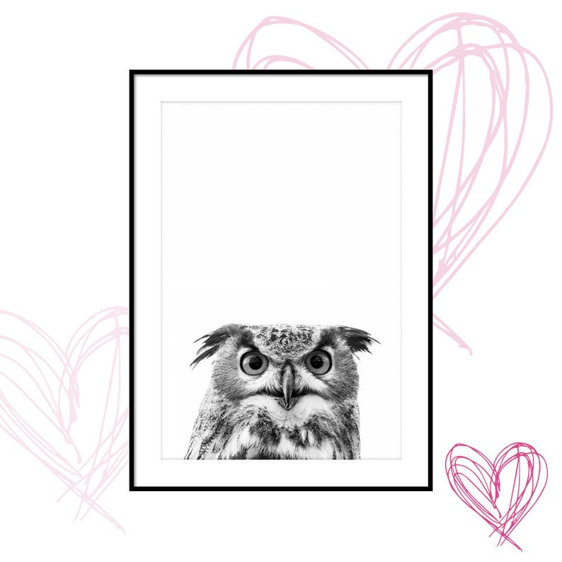 graphic about Owl Printable known as owl printable, owl print, owl poster, animal images prints, owl images, downloadable prints, printable wall artwork, electronic prints