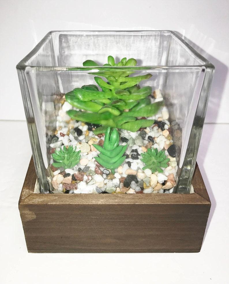 Small Artificial Succulent Terrarium Etsy