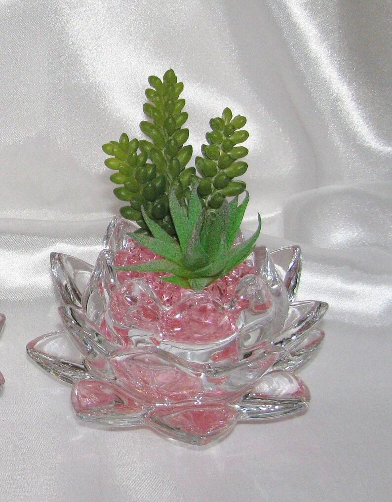 Faux Succulent Arrangement In Glass Lotus Flower Etsy