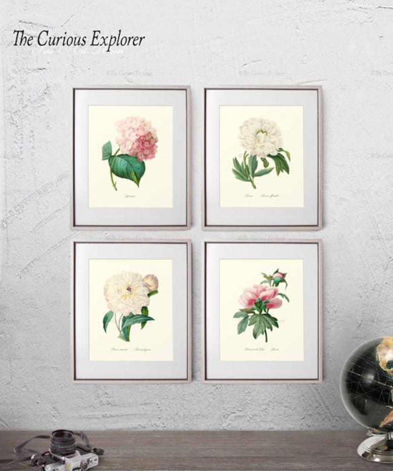 Hydrangea Art Print Flower Print Pack Staircase Prints Name Etsy