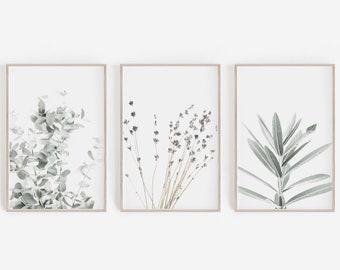 Prints Set,Wall Art Set,Lavender Print,Eucalyptus Print,Set of 3 Prints,Botanical Prints,Botanical Art,Wall Decor,Lavender,Farmhouse Decor