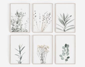 Set of 6 Prints, DIGITAL Prints, Botanical Prints, Botanical Posters, Farmhouse Prints, Farmhouse Wall Art, Farmhouse Decor, Home Decor, Art