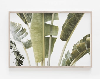 Tropical Print, Palm Leaf Print, Palm Print, Horizontal Print, Horizontal Wall  Art, Large Wall Art, Banana Leaf Print, Tropical Wall Art