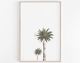 Palm Tree, Palm Print, Palm Tree Print, Palm Photography, Tropical Print, Tropical Decor, Tropical Wall Art, Photography, California Print