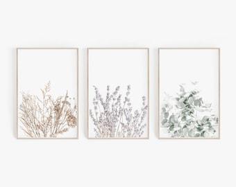 Set of Prints, Digital, Wall Decor, Wall Art Set, Lavender Print, Eucalyptus Print,Set of 3 Prints,Botanical Prints,Lavender,Farmhouse Decor
