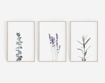 Set Of 3 Prints,Farmhouse Decor,Botanical Print,Wall Decor,Eucalyptus Print