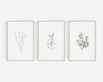Set of Prints, Wall Art Prints, Bathroom Decor, Set of 3 Prints, Botanical Prints, Farmhouse Decor, Lavender Print, Eucalyptus Print, Green