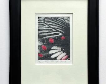 Resplendent Rose, Butterfly art, fine art, contemporary, nature art, etchings, Butterfly decor, collectible fine art,red black & white art