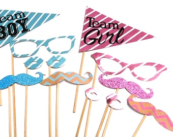 Photo Booth Props - Gender Reveal Baby Shower Props Set of 12