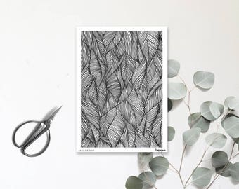 Carte postale illustrée - Tropique - Dessin à la main - Pattern - tirage limité et numéroté - monocotylédone