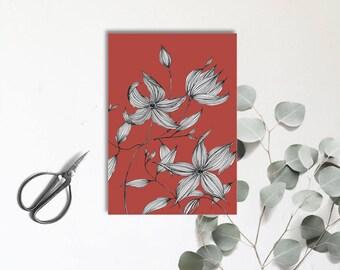 Clématite Rouge - Jolie fleur - Carte postale illustrée - dessin à la main - herbier - tirage numérique en couleur - monocotylédone