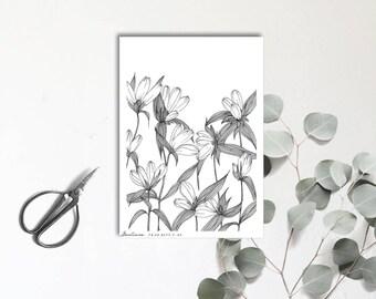 Gentiane- Carte postale illustrée - Dessin à la main - tirage numéroté et limité - monocotylédone