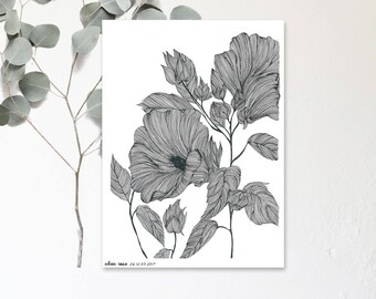 Alcea Rosea - Dessin Illustration réalisé à la main - Affiche  botanique - Exemplaire en tirage limité et numéroté - monocotylédone