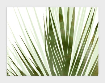 Olive Green Palm Leaf Print, Horizontal Abstract Botanical Watercolor, Tropical Home Decor, Framed/Unframed Fine Art Paper or Canvas