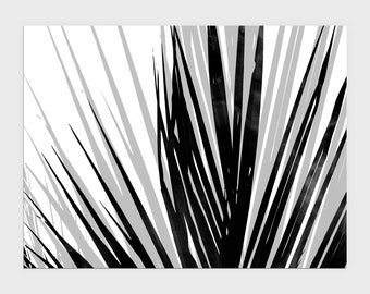 Contemporary Palm Leaf Print in Black and White, Modern Tropical Home Decor, Horizontal Wall Art, Framed/Unframed Fine Art Paper or Canvas