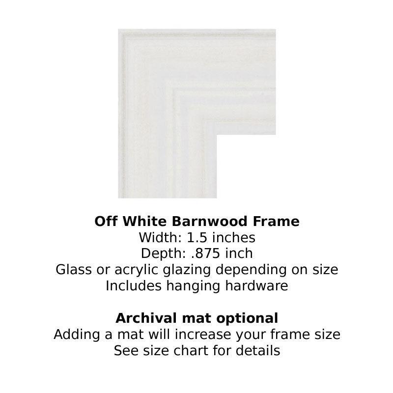 Frame Your Print Off White Barnwood Frame Style