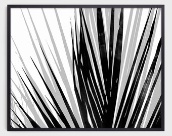 Contemporary Palm Leaf Print in Black and White, Modern Tropical Home Decor, Horizontal Wall Art, Fine Art Paper or Canvas