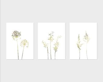 Neutral Botanical Print Set, Dandelion Wall Art, Wildflower Print Set, Set of 3 Prints, Botanical Illustration, Downloadable Prints
