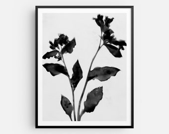 Black and White Moody Floral 2 Print, Modern Farmhouse Flower Painting, Fine Art Paper or Canvas