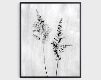 Black and White Flower Photography Print, Rustic Botanical Wall Art, Modern Farmhouse Decor, Fine Art Paper or Canvas