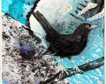 Blackbird Mounted Art Print A4 Square Garden Bird Lover Watcher Fan Picture Gift White Blue Black Song Music Wall Home Decor Hayley Mills Ar