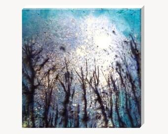 Blue Sky Woodland Canvas Art Print Square Medium Tree Landscape Mottled Picture Wall Art Home Decor Hayley Mills Art hayleymillsart
