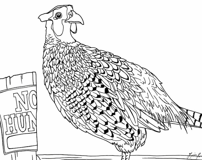 Ring Necked Pheasant Coloring Page