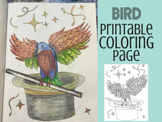 Coloring Pages Bird Coloring Book Adult Coloring Pages Etsy